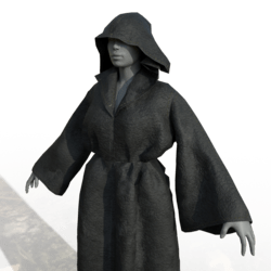 Wizard Robes Female