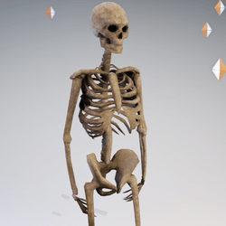 Skeleton Avatar AV2