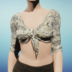 Tan Silk Paisley Tied Crop Top