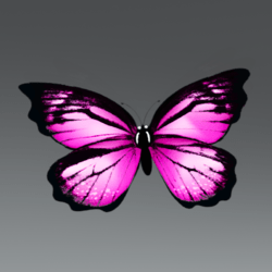 Glowing Animated Butterfly pet [Glasses slot]