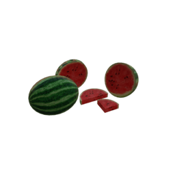 Watermelon Kit