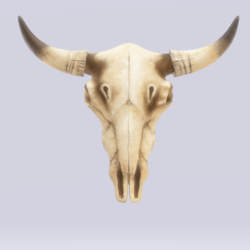 Skull cow