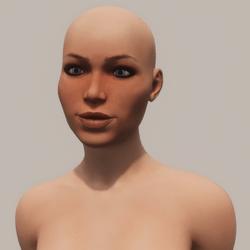 Custom Avatar - Reskin - Face Shape (Avatars)