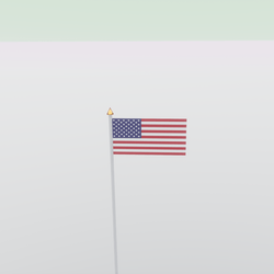USA Flag (TM)