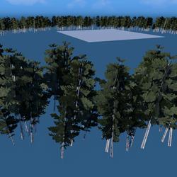 Pine Trees Henge