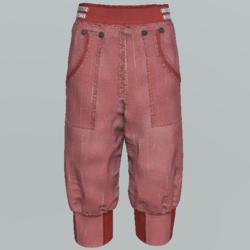 Pants short unisex DCR