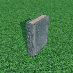Old Book 1