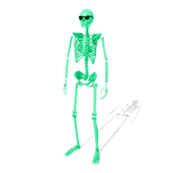 Skeleton (Color Fade) - Avatar