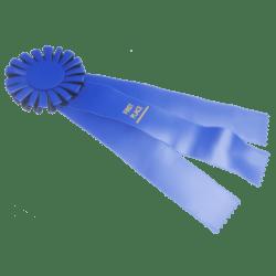Blue Prize Ribbon