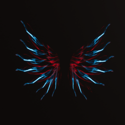 Wings Red&Blue