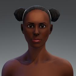 Afro Puff Hair 5a