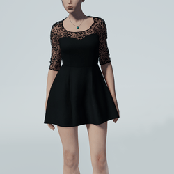 Lace Skater Dress (black)