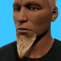 GoateeBeard_Blond