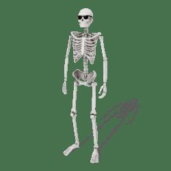 Skeleton (White) - Avatar