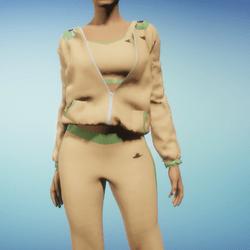 Tan Jogging Suit