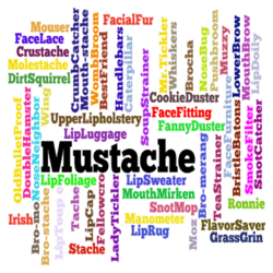 Mustache Wall Decal
