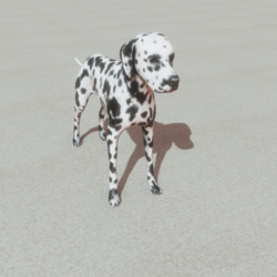 Animals - Dog