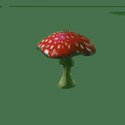 Mushroom_101