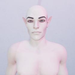 Male Elf Custom Avatar