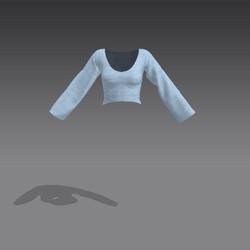 Rose Shirt - Blue (MsAquaria)