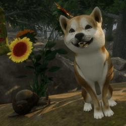 Hund mit Animation