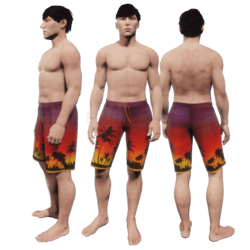 Tropical Sunset Swimming Trunks