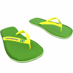 Woman Flip Flop Shoe