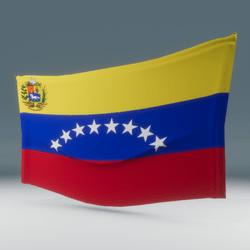 Venezuela Flag Wall Display