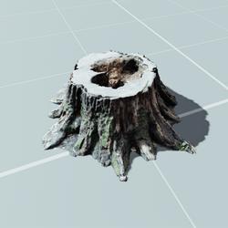 English Tree Stump