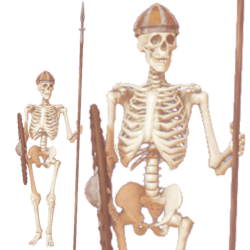 Skeleton Warrior anim R