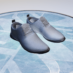 Shoes V13 (male)