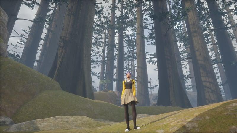 Digitize Sequoia Park