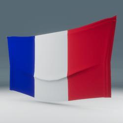 France Flag Wall Display