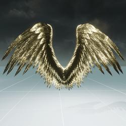 Female Gold Angel Wings