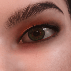 Daphne DarkYello Eyeshadow
