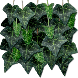 Dark Green Hanging Ivy Mass