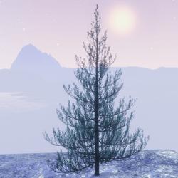 X-mas green tree
