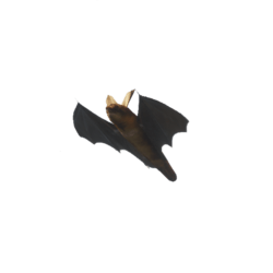 Animated Bat (Wider diameter) with Sound