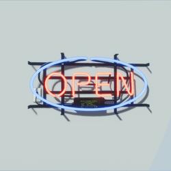 Neon Sign (open)