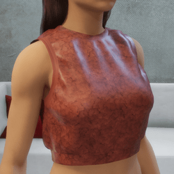 Sports Cropped Top Rust