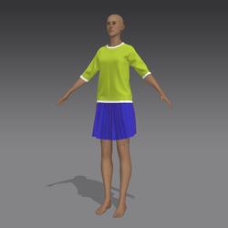 Skirt_plus_blouse_ua