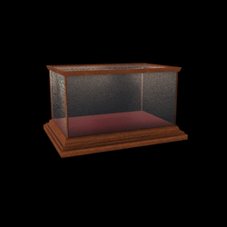 Vintage Display Case [02]