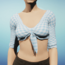 Blue Gingham Tied Crop Top