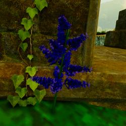 Beautiful Fantasy Flower