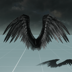 Female Black Angel Wings