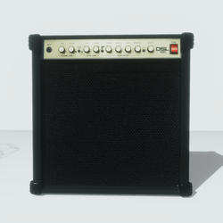 Guitar Amp Speaker