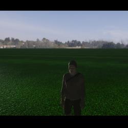 Mid Dark Grass
