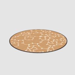 round-carpet