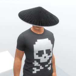 Samurai Jingasa Black n White
