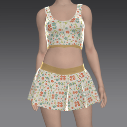 Mini Skirt with Top and flowers
